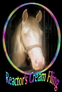 click here..Reactor's Cream Fling, Cremello stallion