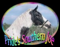 click here.. Pride's Southern Joe