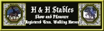 H and H Stables