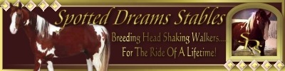 Spotted Dreams Stables